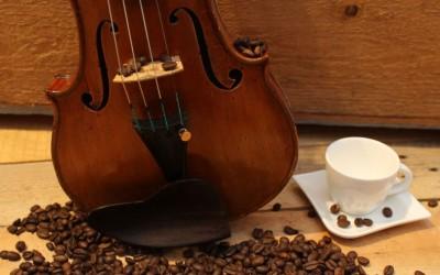 31. Niedersächsische Musiktage – Wundervolle Welt der Caféhaus-Musik im Bürgerhaus Alte Schule in Niederlangen