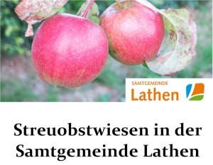 Flyer Äpfel