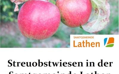 Streuobstwiesen in der Samtgemeinde Lathen