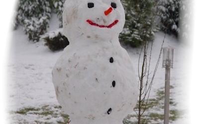 Räum- und Streupflicht bei Schnee und Glätte